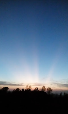 crepuscular rays over the escarpment