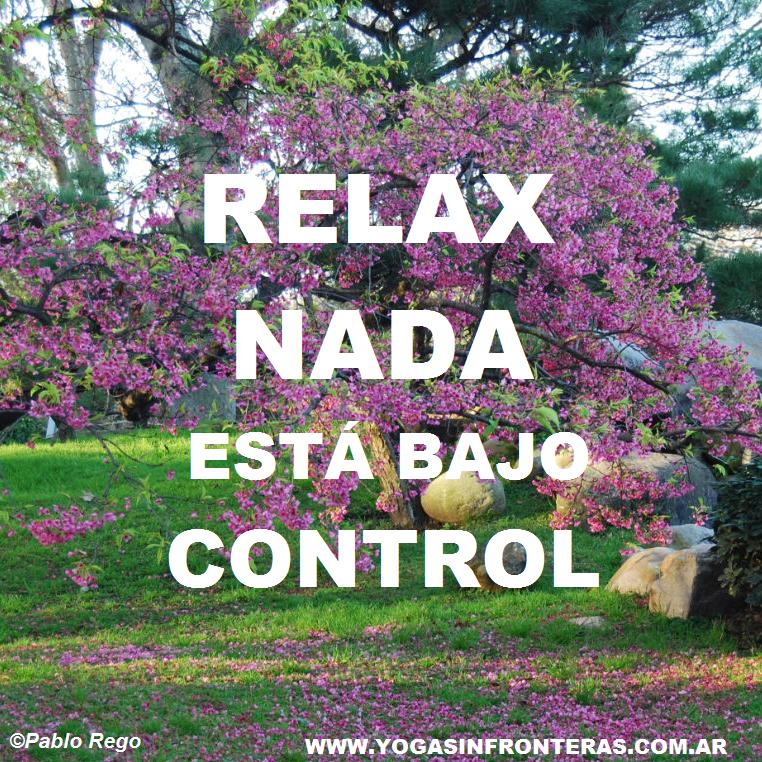 Relaja, nada está bajo control.