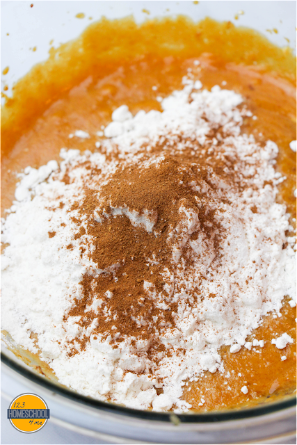 In a separate smaller bowl, combine the pumpkin spice, cinnamon flour, baking powder, baking soda and salt. Add the dry mixture to the pumpkin mixture.