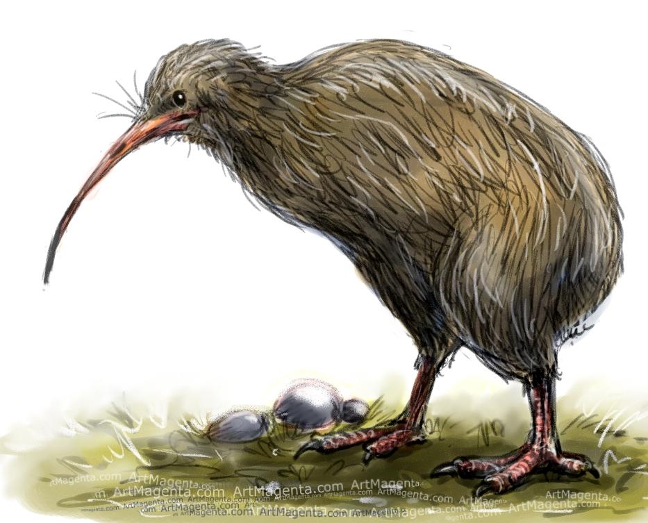 Kiwi sketch painting. Bird art drawing by illustrator Artmagenta