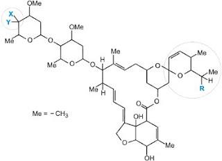Lakton makrosiklik (avermectins dan milbemycins)