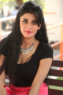 Telugu Actress Harini Stills at Dhyavudaa Movie Teaser Launch  0306.JPG