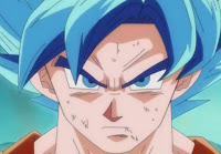 DESCARGAR LOS CAPITULOS DE DRAGON BALL SUPER