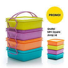"Katalog Promo Tupperware ""Carry All Set with Gift"""