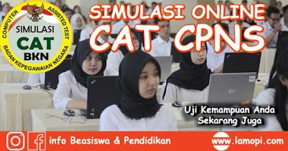 Simulasi Online CAT CPNS Terbaru 2019