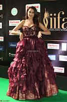 Pragya Jaiswal Sizzles in a Shantanu Nikhil Designed Gown  Exclusive 086.JPG