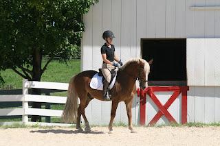 Equestrian Blog of the Day: Cob Jockey
