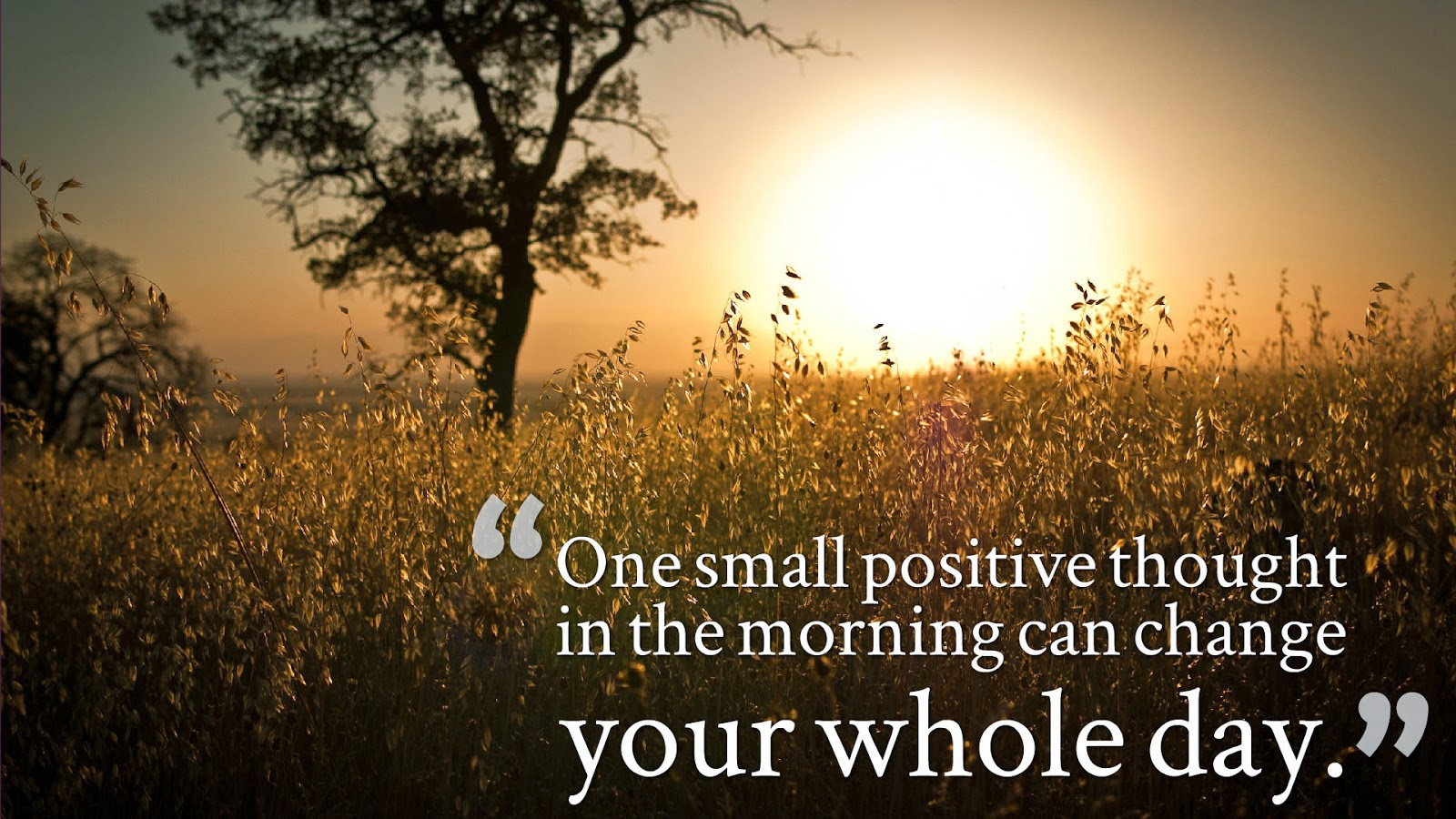 Morning Motivational Quotes Wishing For Many More Wishes Good Morning Quotes With Beautiful