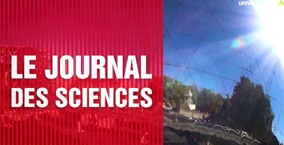 http://www.universcience.tv/video-dans-les-yeux-des-coquilles-saint-jacques-17913.html
