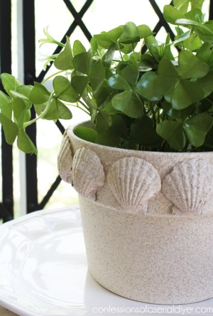 DIY Sea Shell Terracotta Pot Textured Faux Stone Spray Paint Idea