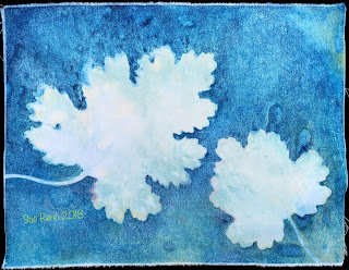 Wet cyanotype -Sue Reno_Image 514