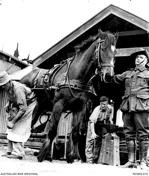 World War II farriers from Australia
