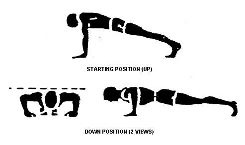 military headlight wiring diagram military push ups diagram daily fitness challenge: skipper's 3/28 challenge: 30 ...