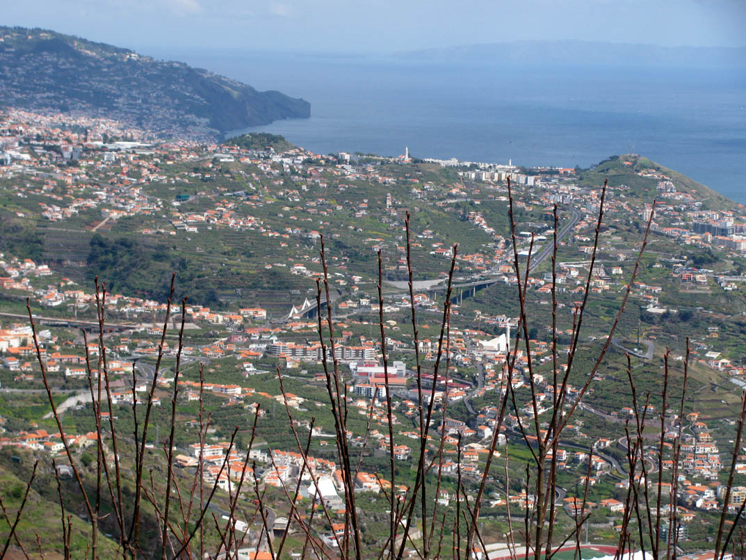distant view for Funchal