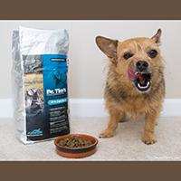 Dr. Tim's Kinesis Dry Dog food review