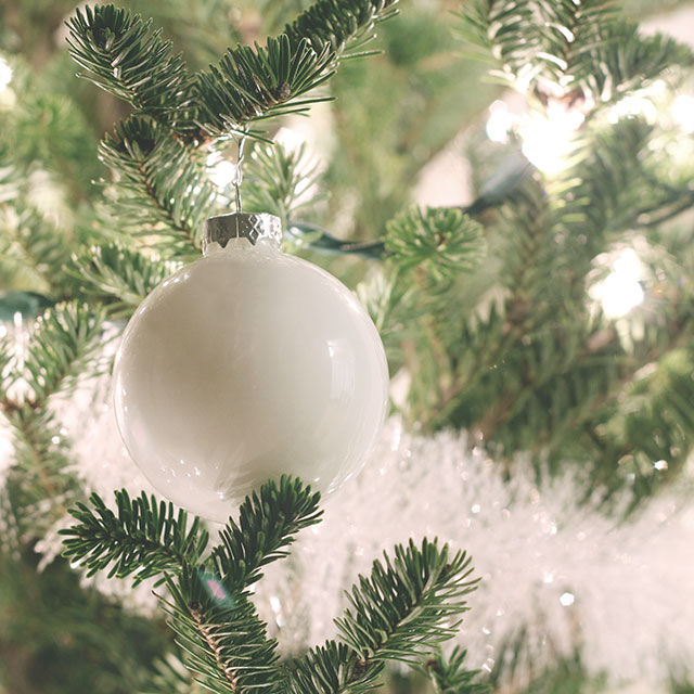 Merry, Bright, & Oh-So-White - Customize your tree with painted glass ornaments