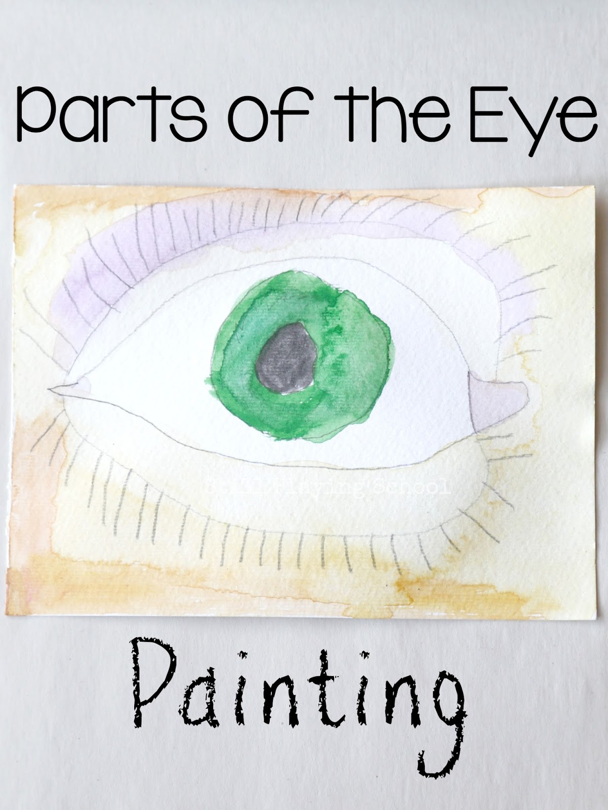 Parts Of The Eye Painting Still Playing School