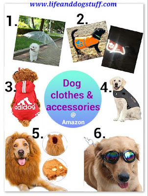 dog clothes and accessories.