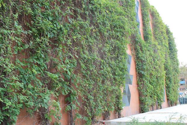 fachada verde