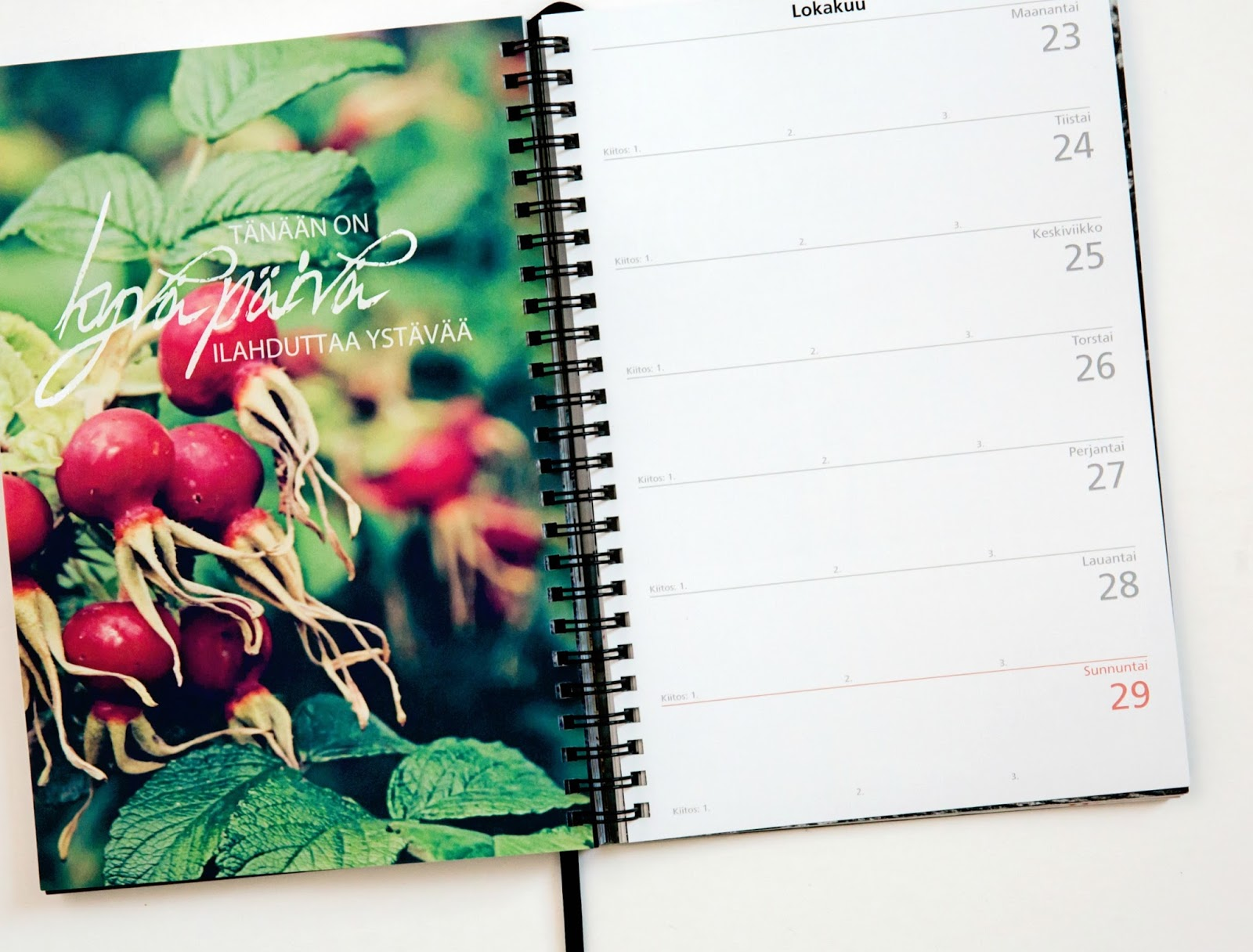 Unelmieni Vuosi kalenteri