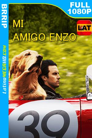 Mi amigo Enzo (2019) Latino FULL HD 1080P ()