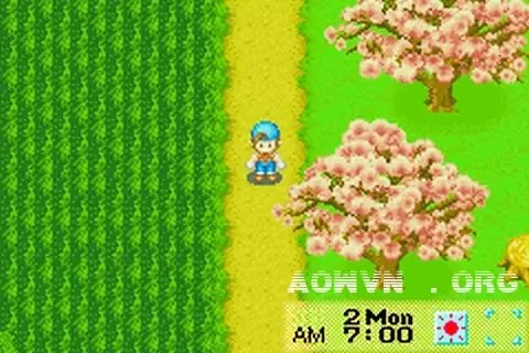 Harvest Moon AowVN.org m%2B%25282%2529 - [ GBA ] Harvest Moon Friend of Mineral Town + More Friend | Game Việt Hóa