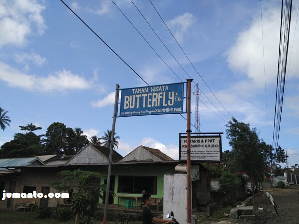 penunjuk jalan butterfly