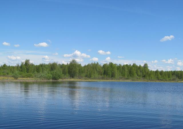 лето на реке
