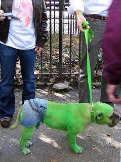 pelagem dos cães