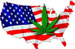 maconha no EUA