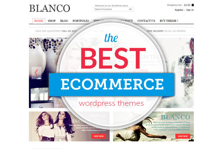 WordPress Themes: Best WordPress ECommerce Themes -SWA Tutor