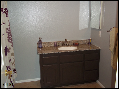 Giani Granite Countertops Paint Review