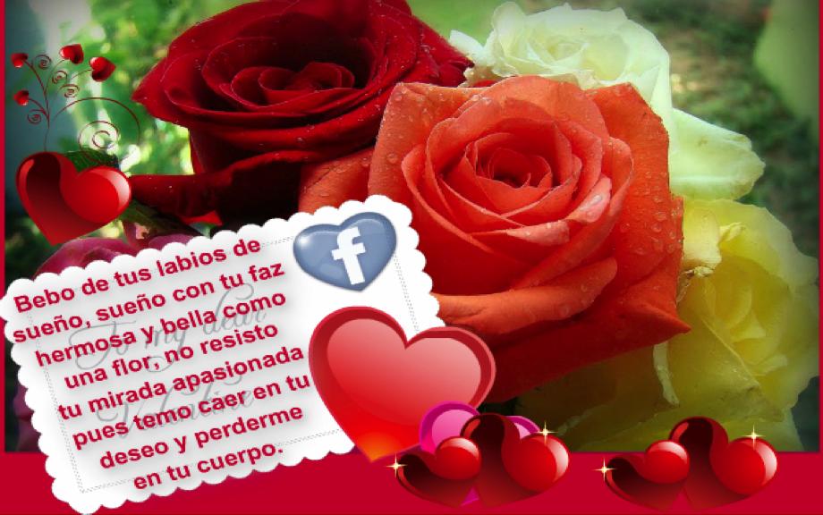 Imágenes De Rosas Muy Bellas Con Frases Imagenes Con Frases