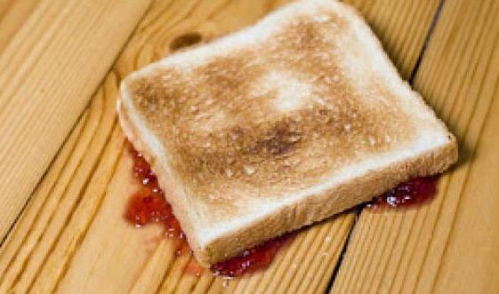 Belum 5 Detik Makanan Yang Jatuh, Apakah Aman Dari Bakteri?