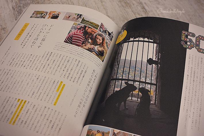 BUHI Magazin