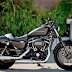 Harley Davidson Roadster Is The New Epitome Of Cool