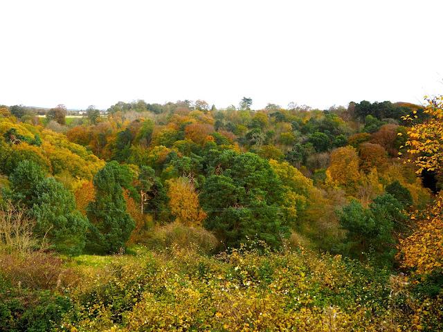 Glen viewed from Rosslyn Chapel, Roslin, near Edinburgh, Scotland