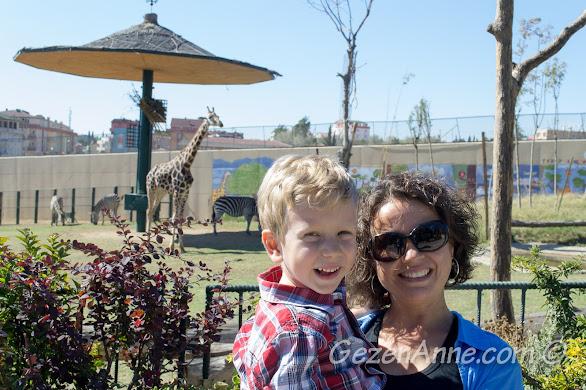 Darıca hayvanat bahçesinde zürafaların yanında