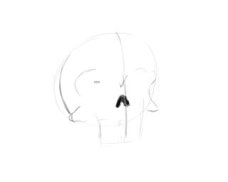 Как можно нарисовать череп