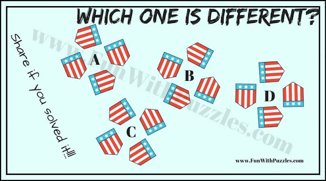 Odd One Out Picture Puzzle