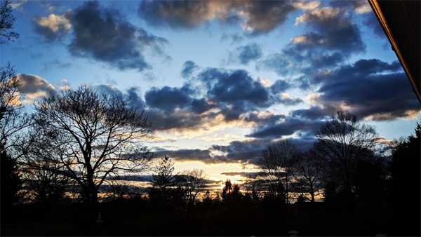 image of a cloudy sky at sunset in beautiful hues of blue, with the silhouette of trees in front of it