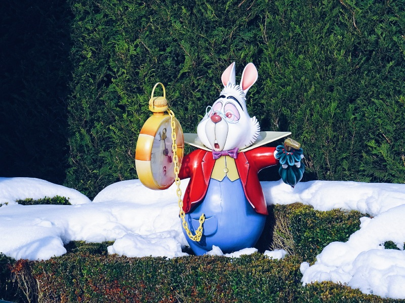 lapin blanc disneyland paris