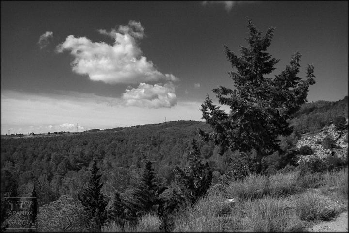 fotografia,murcia,sierra,naturaleza,paisaje