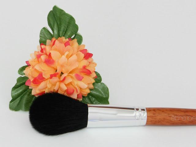 Brocha de maquillaje colorete, polvos compactos etre belle