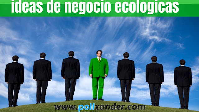 ideas de negocio ecologicas