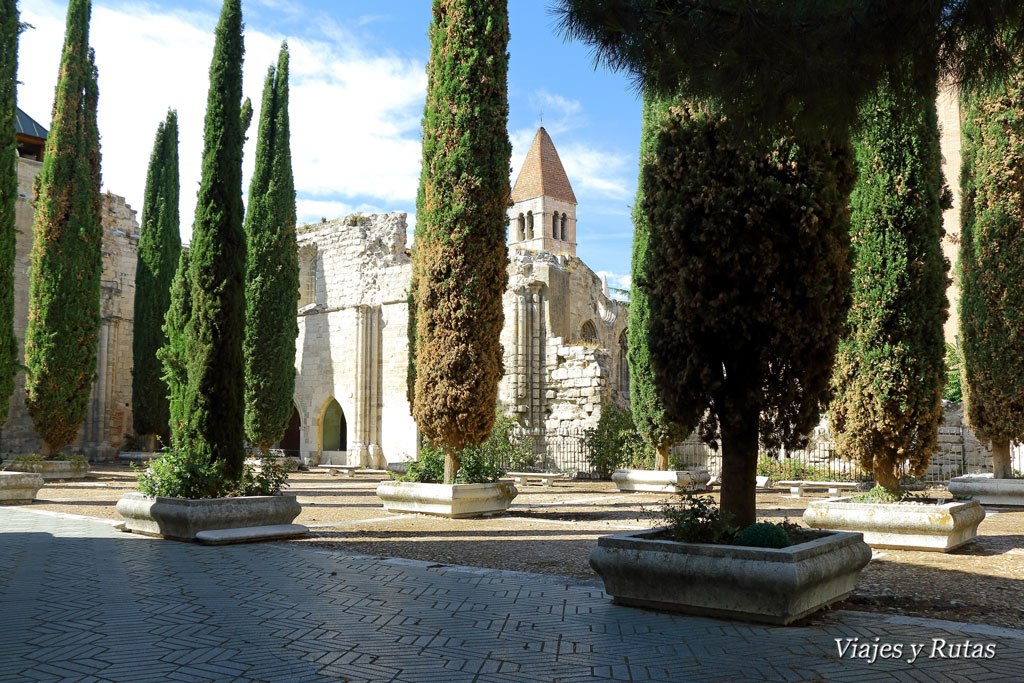 Colegiata Santa María la Mayor. Valladolid