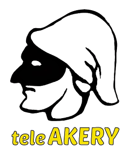 Teleakery frequency on Hotbird