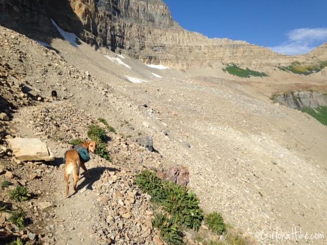 Hiking Mt. Timpanogos via Aspen Grove