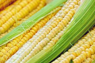 Cara menghilangkan komedo di hidung dengan jagung