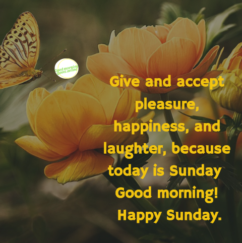 5 Good Morning Sunday Message With Beautiful Image Lovely Sunday
